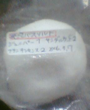 20060307_2022_0000.jpg